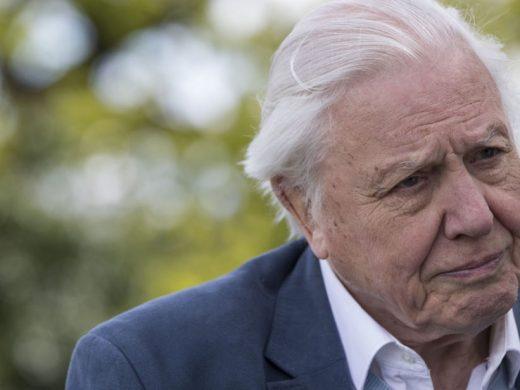 David Attenborough Fights Against Plastic Pollution